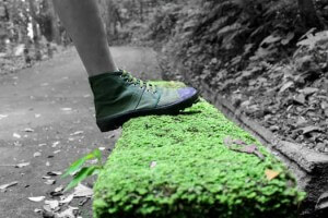 environmentally friendly business 1